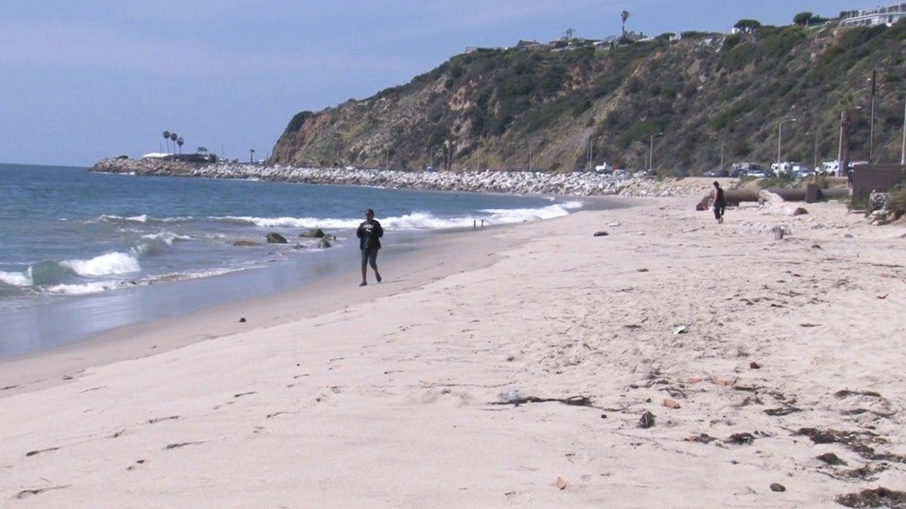 Malibu is the third California city to ban disposable plastics. (Photo by Brooke DeGumbia/Cronkite News)