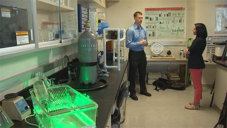 Ryan Schmoll has been volunteering in the study of green light therapy. (Source: 3TV/CBS 5)