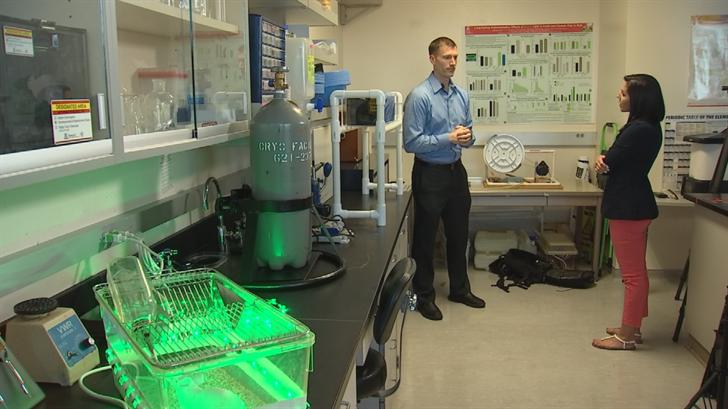 Ryan Schmoll has been volunteering in the study of green light therapy.(Source: 3TV/CBS 5)