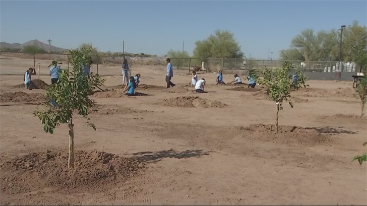 Dave 'Garden Guy' Owens helps students at Sacaton Middle School plant an orchard (Source: 3TV/CBS 5)