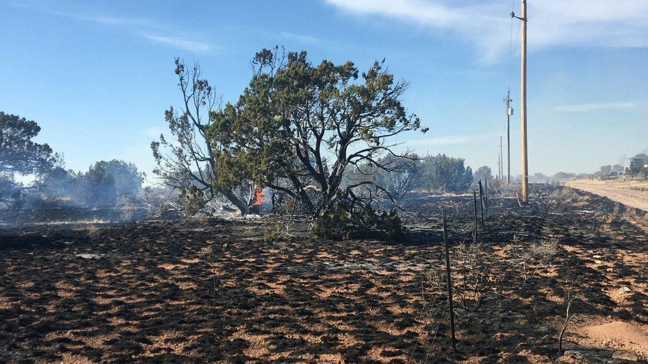 The Indian Meadow fire had burned around 100 acres. (Source: 3TV/CBs 5 News)
