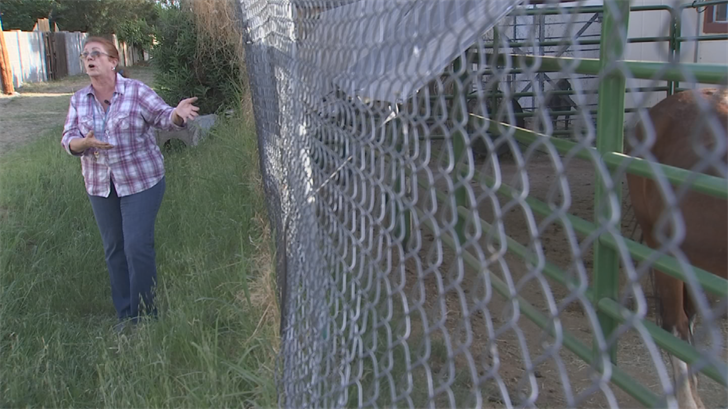 Whitess believes the kidnappers lead Peaches through the hole in the fence and then down the alleyway near 36th Avenue and Bethany Homes Road. (Source: 3TV/CBS 5)