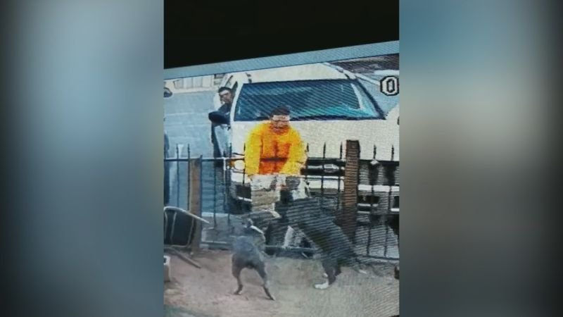 Earlier this month, a man wearinga yellow shirt scooped up the 4-month-old puppy over the fence and carried her into an SUV before driving off.(Source: 3TV/CBS 5)