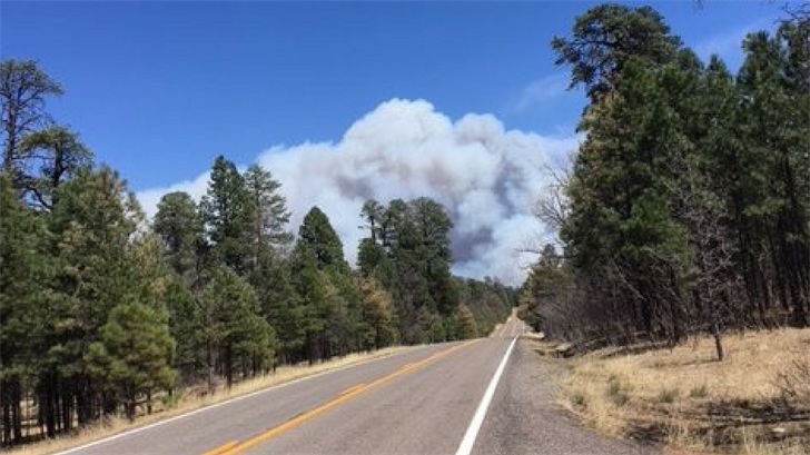 The Tinder Fire, burning in northeastern Arizona, caused evacuations on Sunday. (Source: Arizona Department of Transportation)