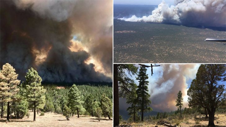 Firefighters have said buildings have been lost to the flames. (Source: U.S. Forest Service)