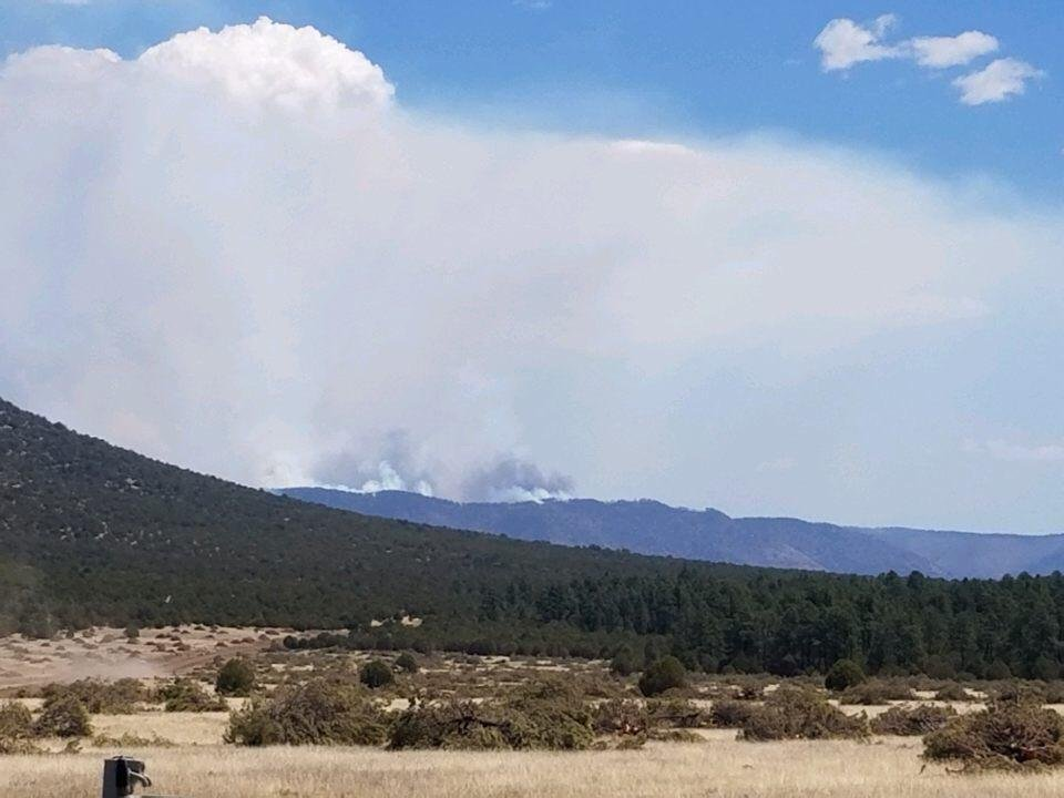 The wildfire is burning about 20 miles southeast of Whiteriver on the Fort Apache Indian Reservation, according to the U.S. Forest Service. (Source: Inciweb)