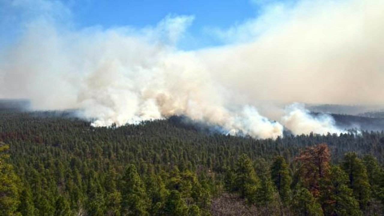 The Tinder fire burning in Coconino County. (Source: US Forest Service)
