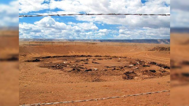 This Thursday, May 3, 2018 photo shows dozens of horse carcasses lying in a dry watering hole now surrounded by a barbed wire fence near Cameron, Ariz. (Source: AP Photo/Felicia Fonseca)