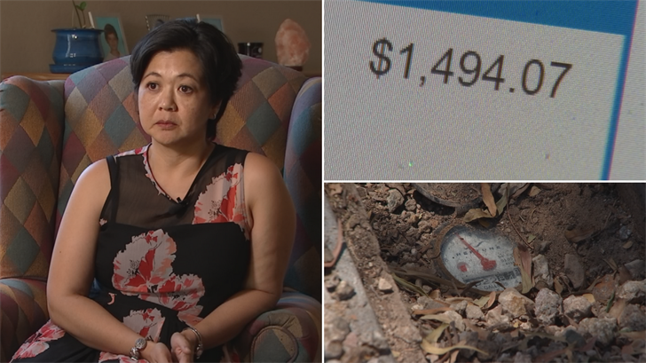 Stephanie Cornelius can't believe she got a water bill for nearly $1,500. (Source: 3TV/CBS 5)