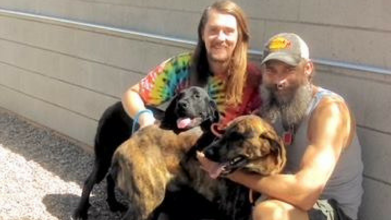 'Calvin' and 'Hobbs' were adopted on Tuesday and get to stay together with their new forever family. (Source: Maricopa County Animal Care and Control)