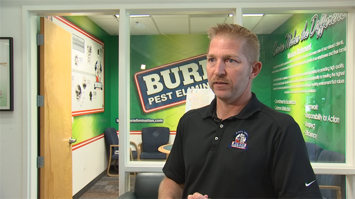 Mike Boyle with Burns Pest Elimination (Source: 3TV/CBS 5)