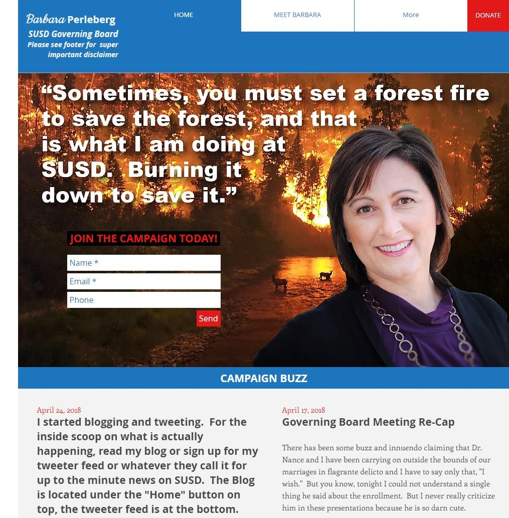 """The founder of """"Perleberg for SUSD"""" says it is a parody site. (Source: 3TV/CBS 5)"""