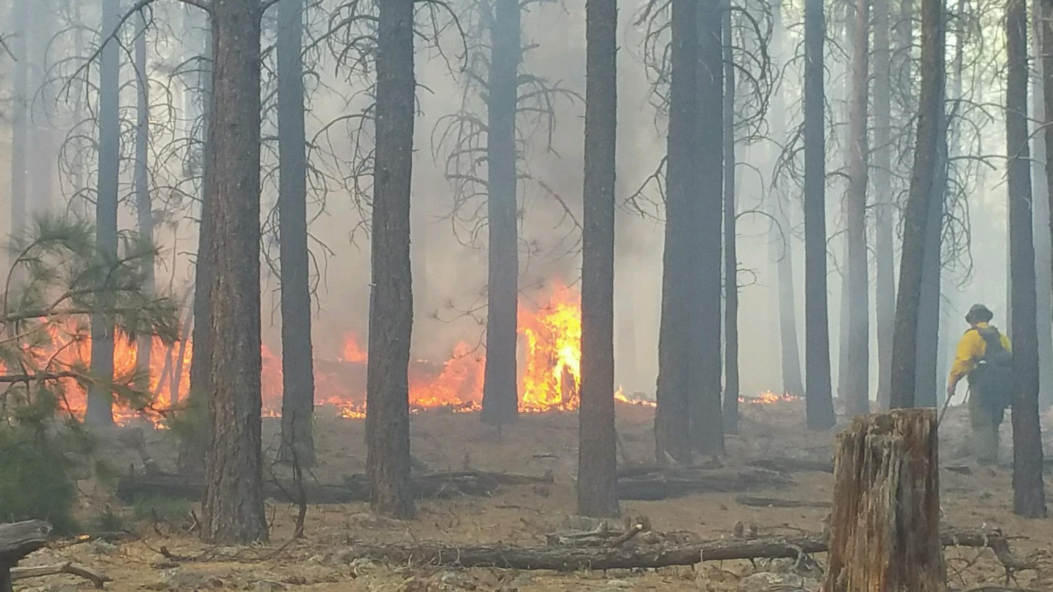A campsite north of the fire was evacuated. (Source: Forest Lakes Fire Department)