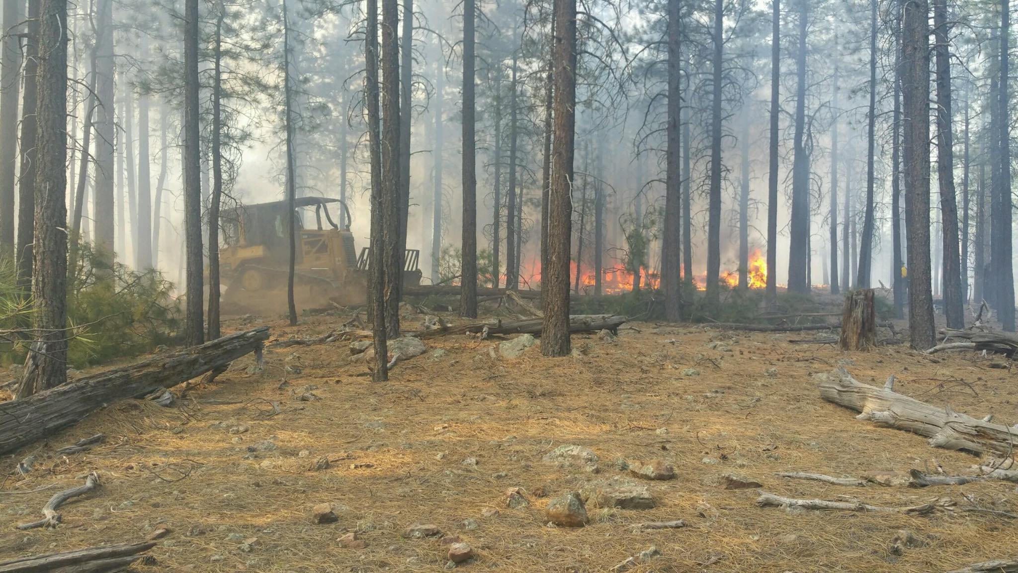 An investigation is underway into what started the wildfire. (Source: Forest Lakes Fire Department)