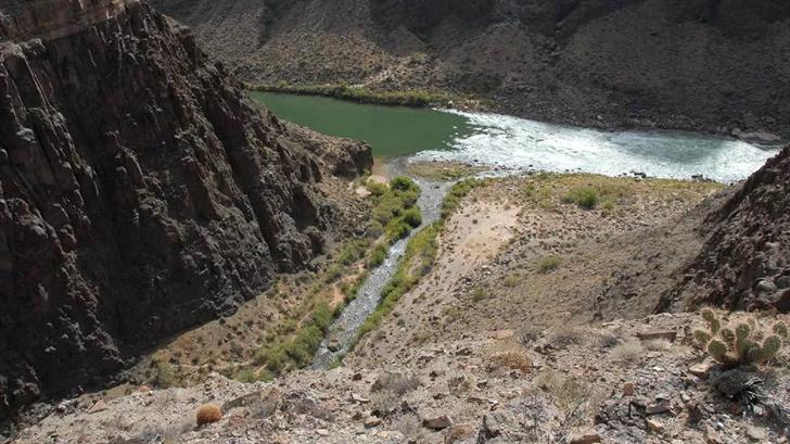 Colorado River (Source: Bob Ribokas via Kaibab.org)