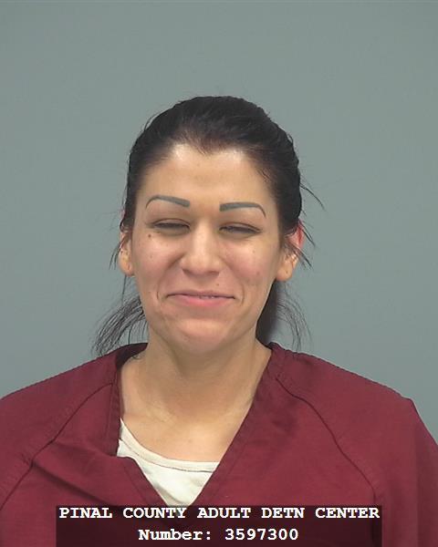 Mugshot of Danett Ruiz, 28. (Source: Pinal County Sheriff's Office)