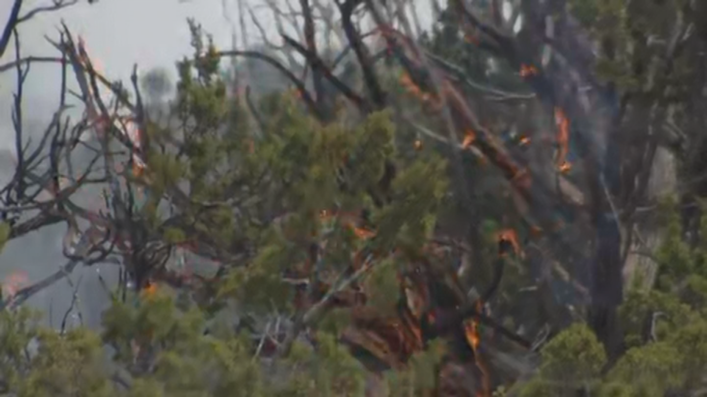 Windy weather remains a challenge for fire crews. (Source: 3TV/CBS 5)