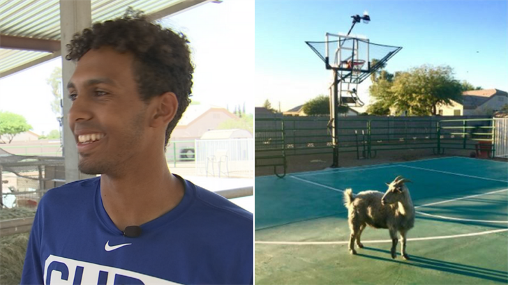 The fact that second-round pick Brennen Davis is in charge of taking care of his pet goat seems like he was meant to be a Chicago Cub. (Source: 3TV/CBS 5)