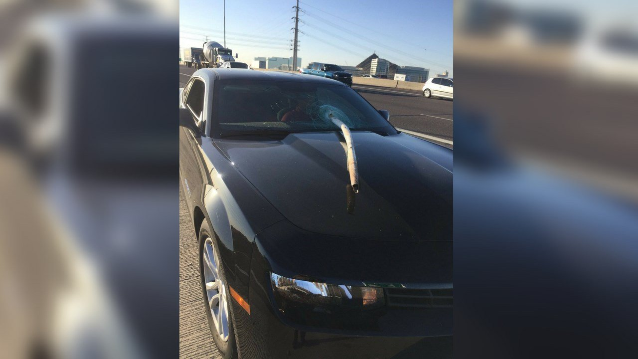 According to DPS, The driver moved his head to the right just as the pipe pierced his car's windshield.(Source: AZDPS/Twitter)