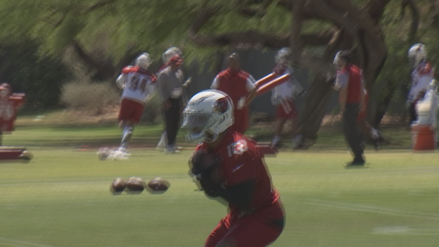 He's expected to handle punt returning duties as a Cardinals rookie. (Source: 3TV/CBS 5)
