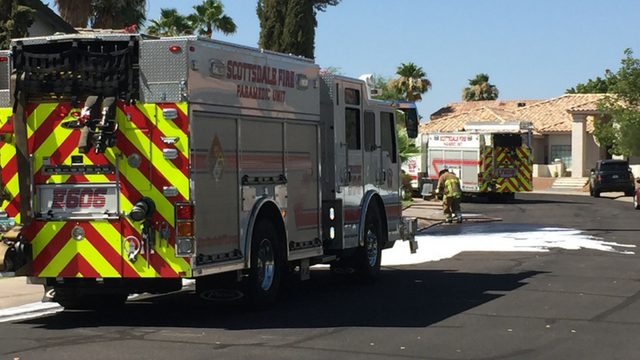 Bees attacked a teen in Scottsdale. (Source: 3TV/CBS 5)