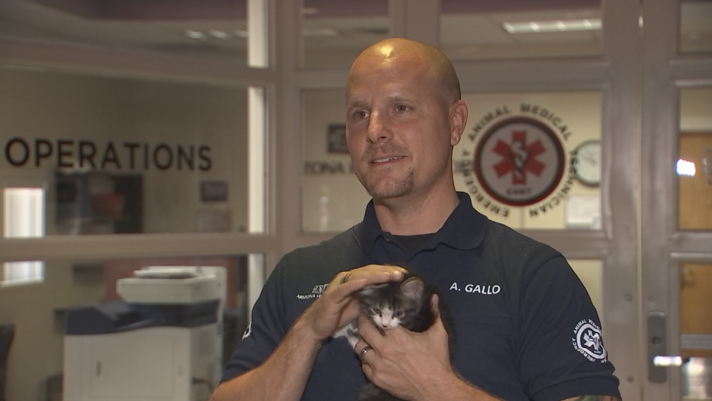Andy Gallo and the rescued kitten. (Source: 3TV/CBS5)