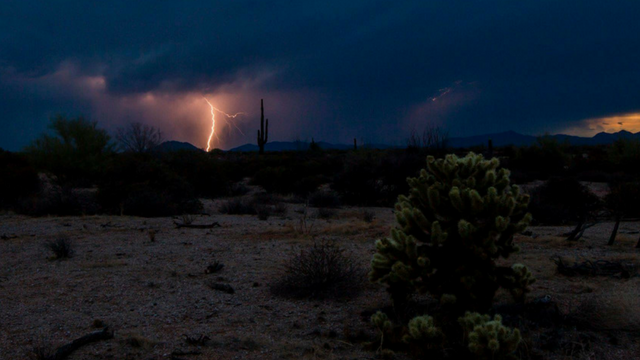 A view of lightning at McDowell Mountain Regional Park on July 8. (Source: Steven Klein)