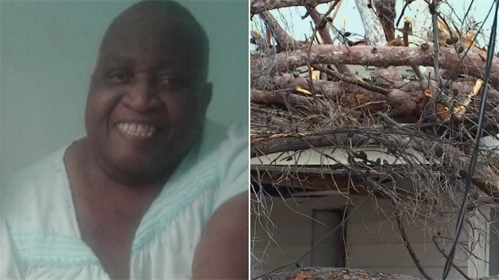 Ellen Sims Oso was sitting in her bed Monday when the tree in her front yard came crashing onto her. (Source: 3TV/CBS 5)