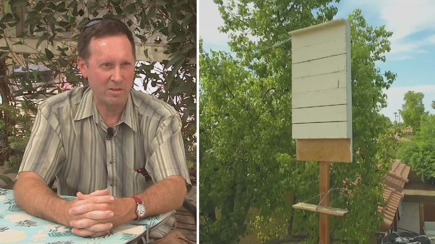 "A homeowners association in Chandler is telling Steve Pate he has to get rid of his bat cave; it quite literally houses bats, and the association calls it a ""nuisance."" He believes he's doing the neighborhood a favor. (Source: 3TV/CBS 5)"