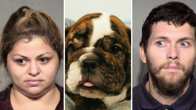 Two people were arrested after police said they stole a puppy from a Tempe store. (Source: Maricopa County Sheriff's Office/Linda Nofer)