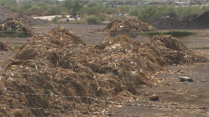 The City is paying Palm Silage Inc. to take it off their hands, rather than hauling it 50 miles to the landfill. (Source: 3TV/CBS 5)