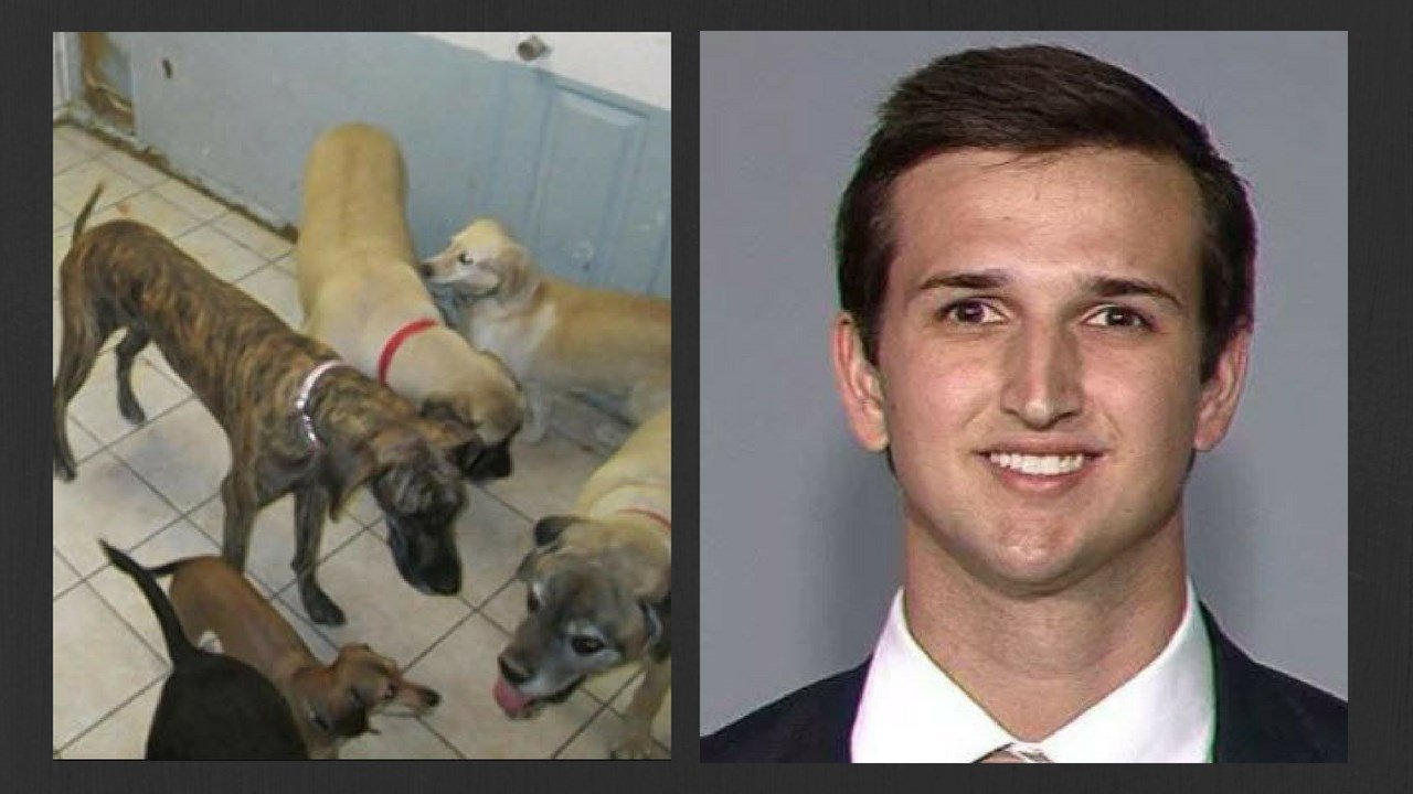A judge has dismissed a malicious-prosecution lawsuit by the adult son of outgoing U.S. Sen. Jeff Flake over the now-dismissed animal cruelty charges filed against him in the 2014 heat-exhaustion deaths of 21 dogs at an Arizona kennel operated by his then