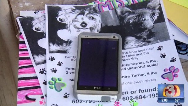 Dogs held for ransom