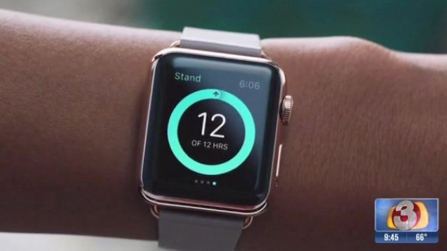 Apple will release the Apple Watch, the Apple Watch Sport and the Apple Watch Edition.