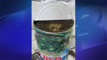 U.S. Customs and Border Protection officers discovered 3,300 pounds of marijuana concealed in canned jalapeños. By Jennifer Thomas