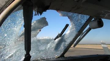 A small plane hit a bird or birds near Show Low, shattering the wind screen. The pilot suffered minor facial cuts but landed safely. By Jennifer Thomas