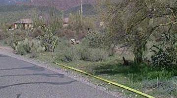 Investigators on scene of a deadly chopper crash in Cave Creek. By Alicia Barron