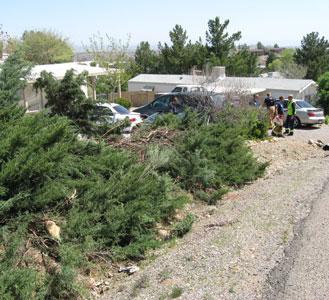 Travel pattern through hedge and victim's location By Jennifer Thomas