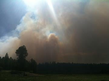 A wildfire that broke out just east of downtown Flagstaff has prompted evacuations of nearby businesses and homes that might be in the fire's patch By Catherine Holland