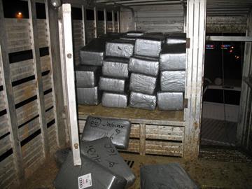 DPS found 4,535 pounds of marijuana inside a cattle trailer. By Jennifer Thomas