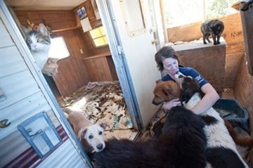 The Humane Society of the United States helped rescue dozens of animals near St. Johns. By Jennifer Thomas