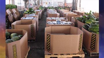 Authorities found 5,440 pounds of marijuana in a shipment of watermelon. By Jennifer Thomas