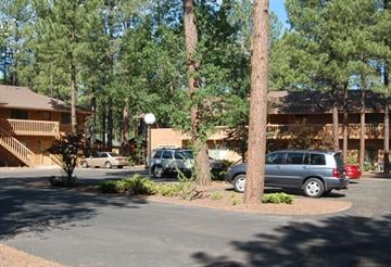 The bear attack on a Gilbert woman took place just beyond the light post in the center of the parking area in Sports Village Unit 4 in Pinetop. By Jennifer Thomas