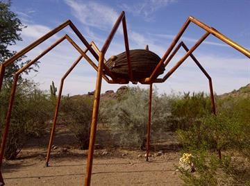 Daddy longlegs By Catherine Holland