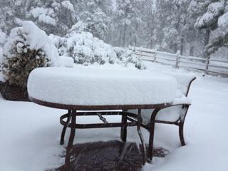 A backyard in the Timberline neighborhood of Flagstaff on Sunday morning By Mike Gertzman