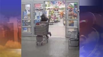 Surveillance photos from the armed robbery and homicide that occurred at the Wal-Mart store at 2020 N. 75th Ave. just after midnight Saturday morning. By Mike Gertzman