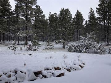 A cold Spring storm that blew into Arizona dropped up to a foot of snow in Flagstaff and some snow as far south as Prescott. By Mike Gertzman