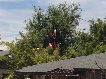 A helicopter crashed near 19th Street and Roma Avenue in Phoenix. By Jennifer Thomas