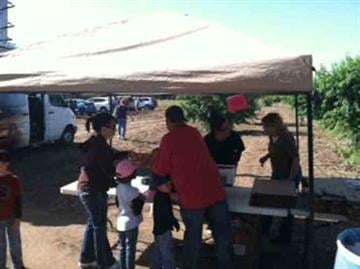 A few peach fans stop by Schnepf Farms in Queen Creek. By Andrew Michalscheck
