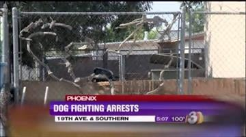 Phoenix police arrested nine people after responding to a dog fight at a home near 19th and Southern avenues. By Jennifer Thomas